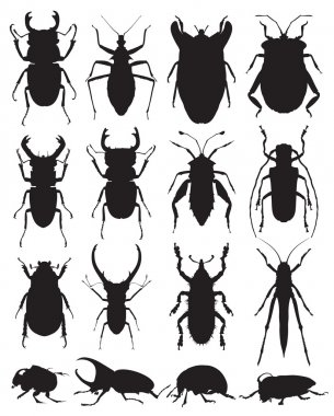 Beetles vector silhouettes