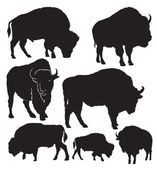 Photo Buffalo vector silhouettes
