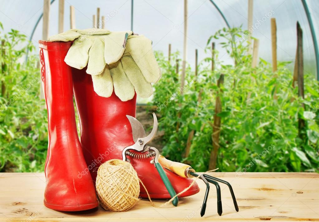 Garden tools and rubber boots into greenhouse