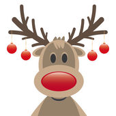 Photo Rudolph reindeer red nose christmas balls