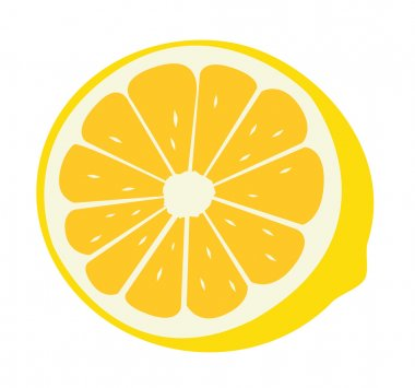 Fresh lemon a vector illustration stock vector