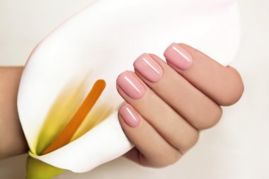 Manicure with gel coating .