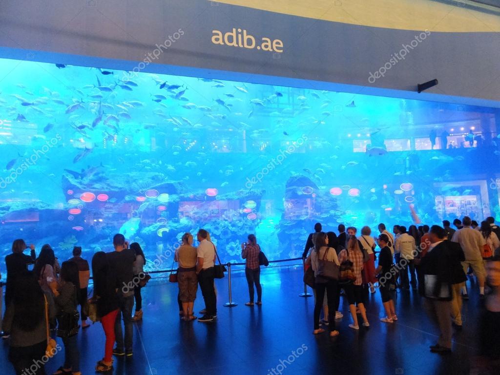 Крупнейший в мире аквариум дубай оаэ снять квартиру в дубае на длительный срок недорого помесячно