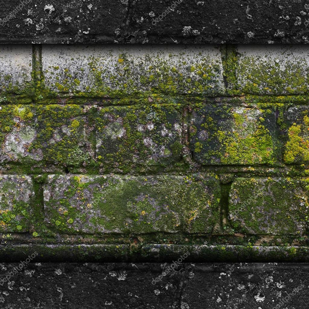 Moos Alte Grüne Wand Stein Muster Schimmel Graue Textur ... Graue Wand Und Stein