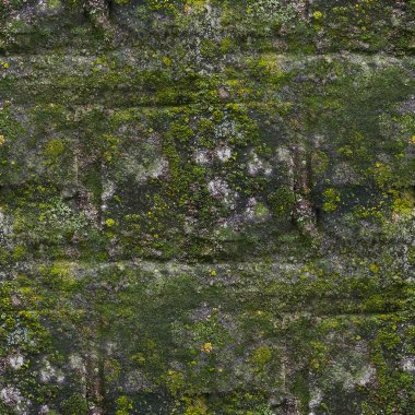 Seamless moss old green wall stone pattern mold gray texture bac