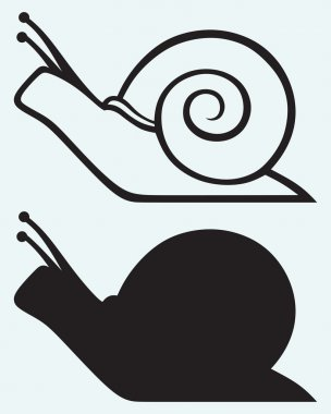 Illustration snail