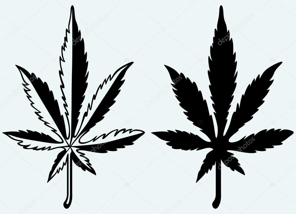Cannabis leaf silhouette