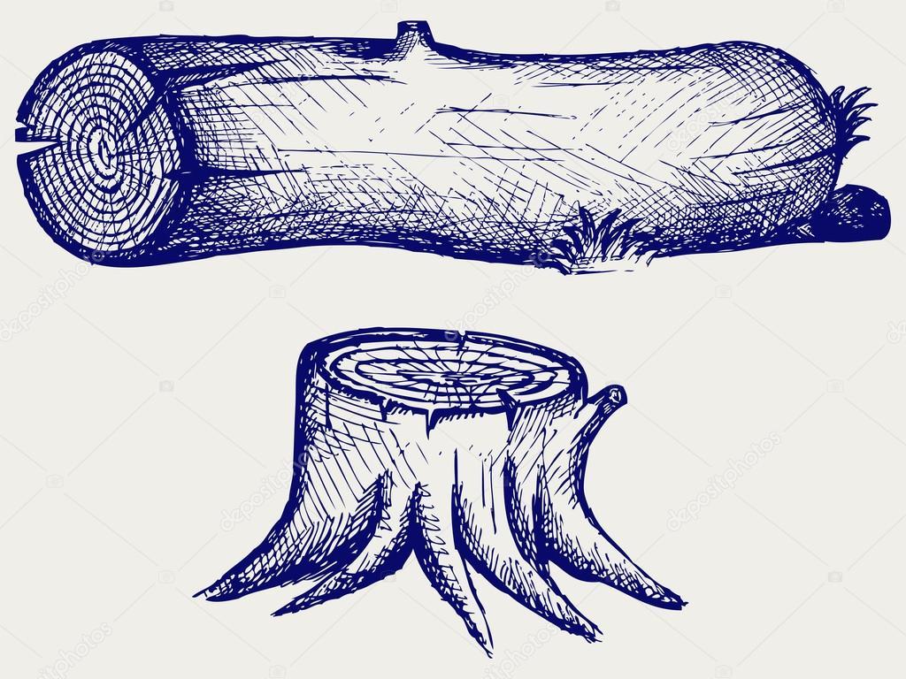 Old tree stump and log