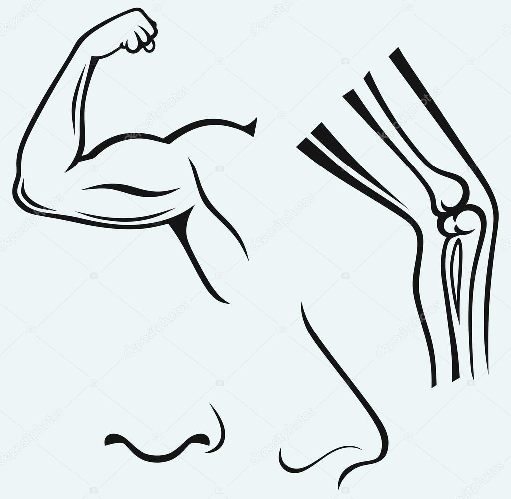 Menschliche Körperteile. Hand, Fuß, Nase — Stockvektor © Kreativ ...
