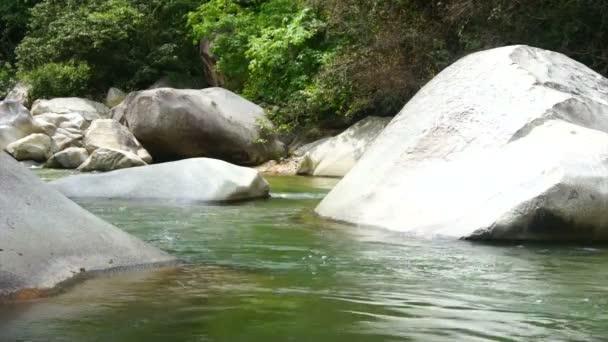 tropická řeka