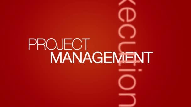 řízení projektu