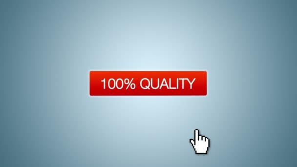 100 % kvalita, služby kompetence animace