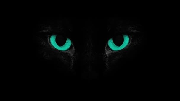 kék blinkng macska szeme
