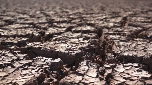 környezetvédelmi, repedezett, száraz föld