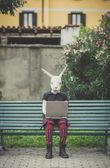 Fotografie žena maska králík