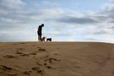 Boy Standing with Dogs On Dune
