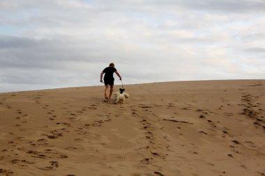 Boy Walking Dogs Up Dune