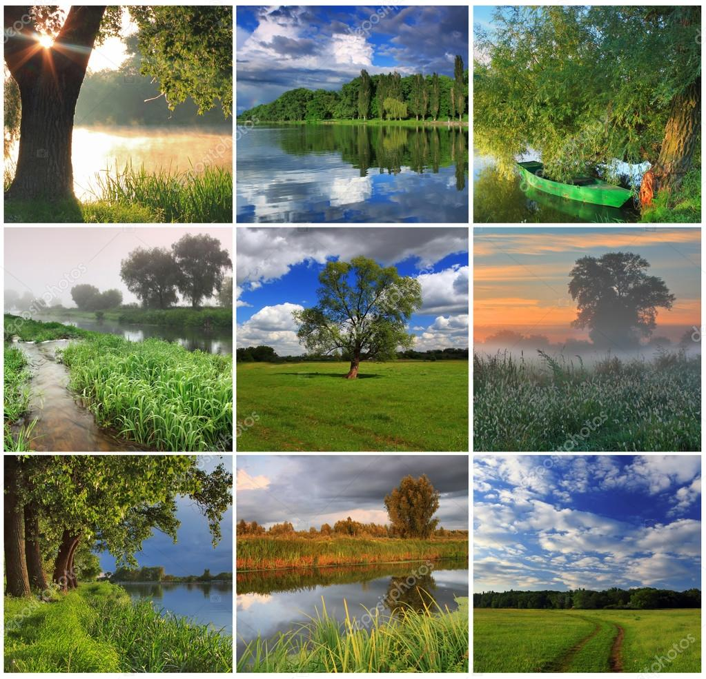 Collage of spring landscapes