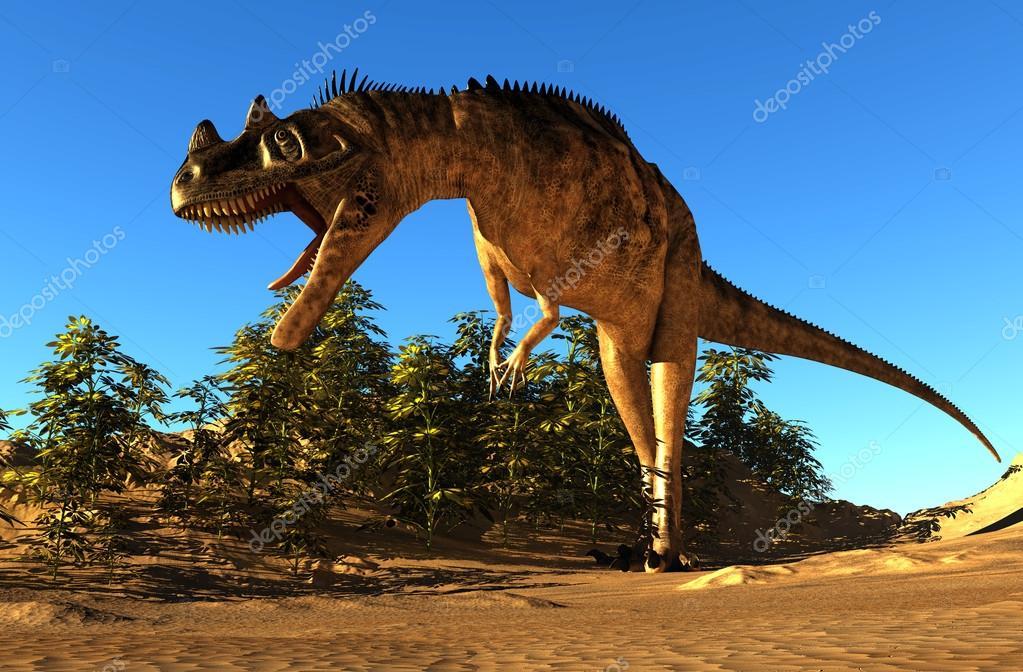 palaeontology #hashtag