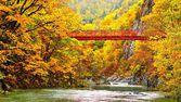 Fotografie podzimní proud
