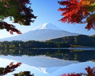 Mt. Fuji in the Autumn