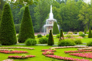 Peterhof Palace. Roman fountain of the Lower Park in the rain