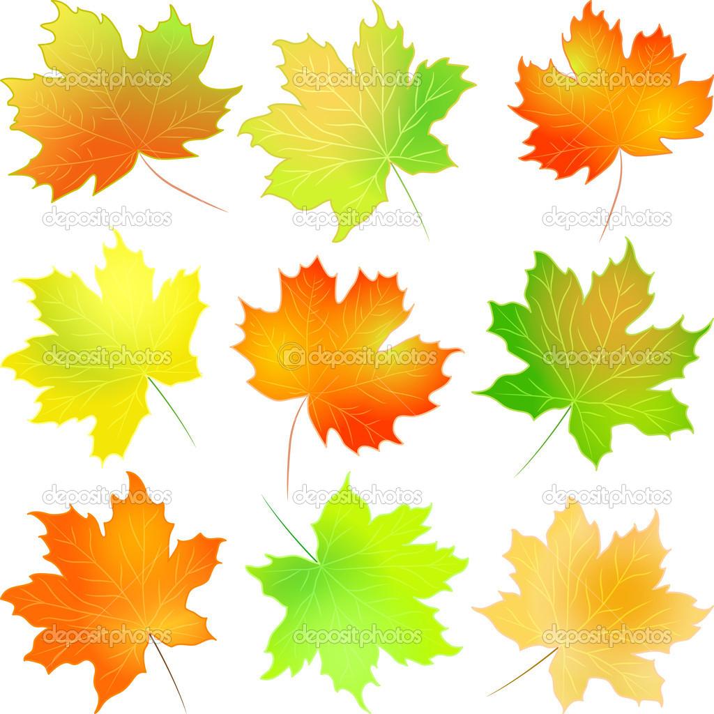 картинка осенний листочек