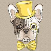 Vektorové vtipné kreslené bederní Francouzský buldoček pes
