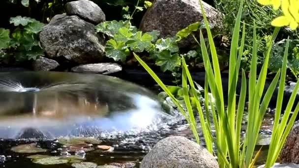 zahradní jezírko s kašnou