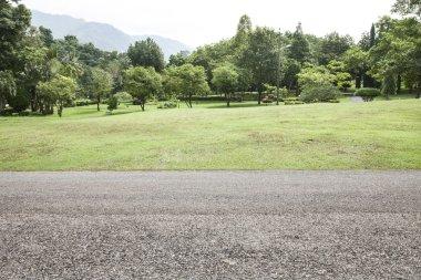 road garden background