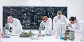 kutatók szerint Mikroszkóp elemzés