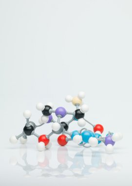 multicolored three dimensional molecular model