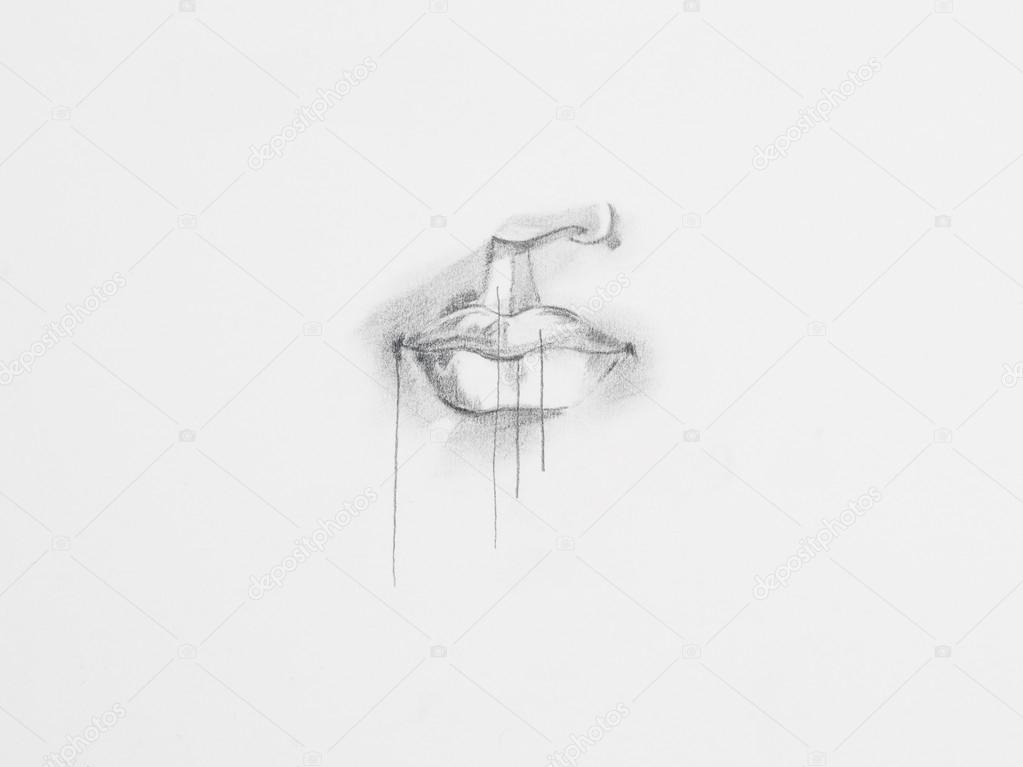 Kresba Tuzkou Anatomie Stock Fotografie C Shotsstudio 34937291
