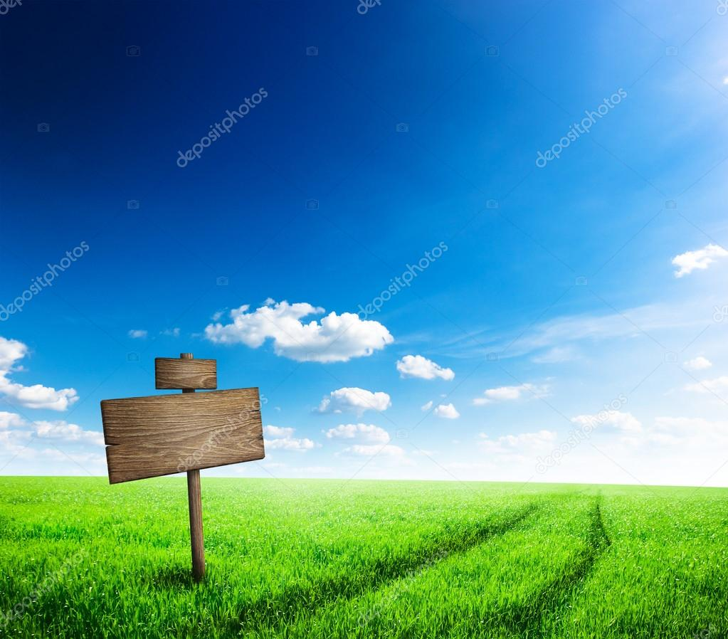 Road sign in green grass field over blue sky background