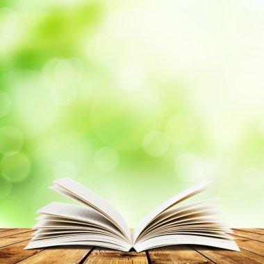 "Картина, постер, плакат, фотообои ""Книга"", артикул 14149309"