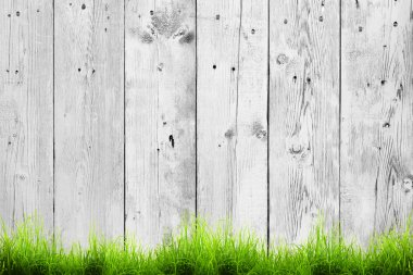 Fresh spring green grass and leaf plant over wood fence background stock vector