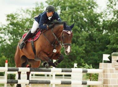 Equestrian jumping sport