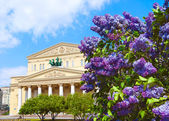 Photo Bolshoi Theatre