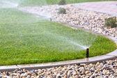 irrigatore irrigazione erba