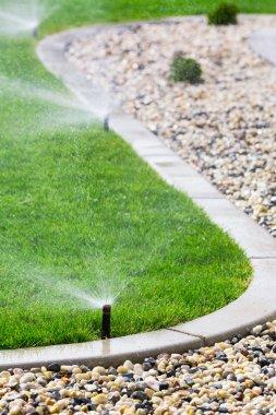 Sprinklers watering grass