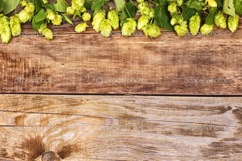 otoño ramas salto de madera vieja — Foto de stock © bozhdb #31227175