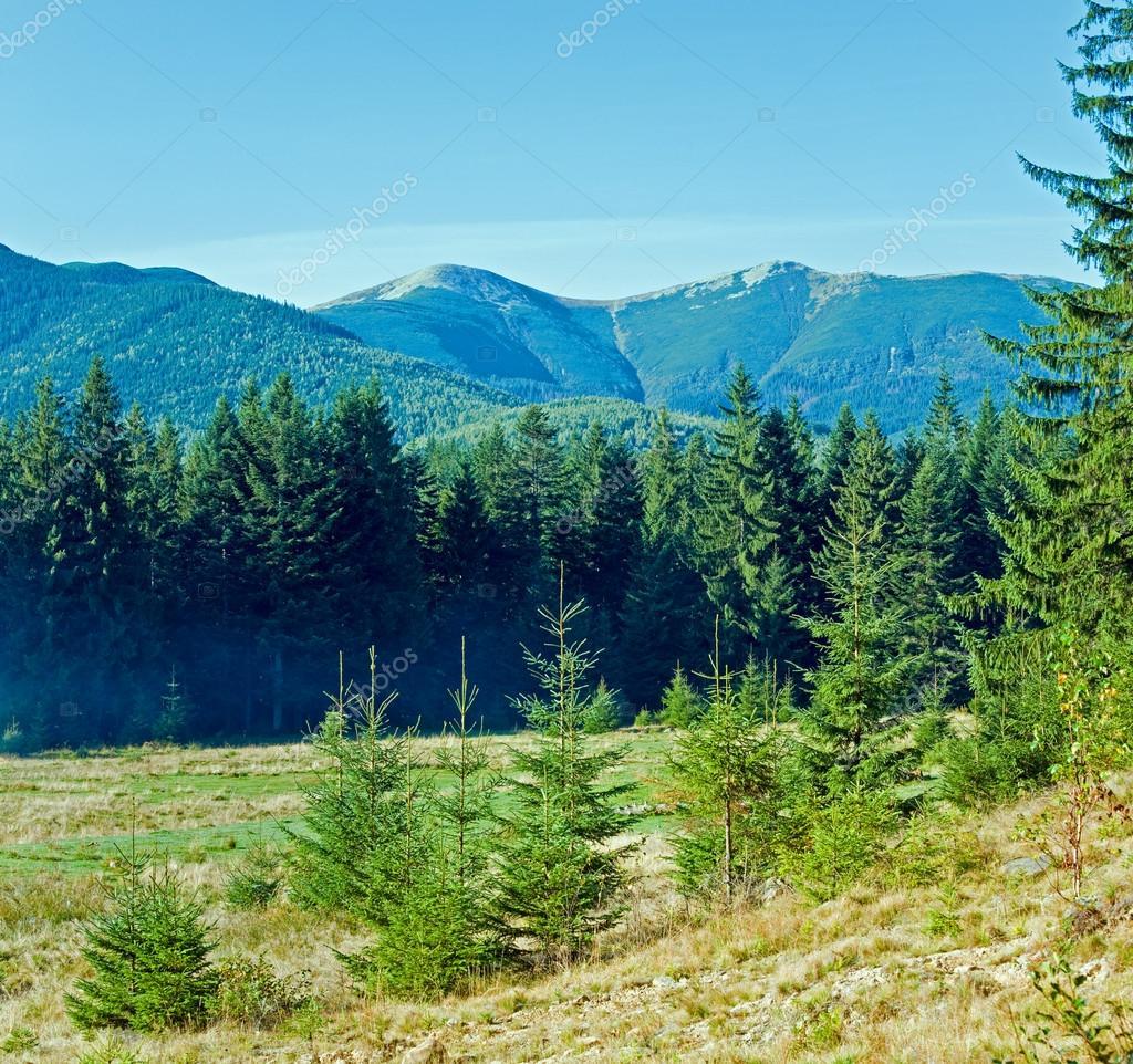 Фотообои Утро туманное осенний горный пейзаж