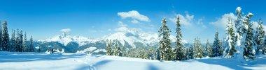 Winter mountain panorama with snowy trees (Filzmoos, Austria)