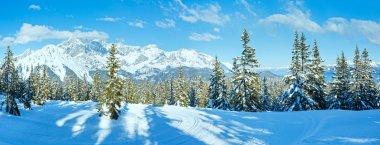 """Картина, постер, плакат, фотообои """"зимние горные еловые леса (австрия) )) постеры плакаты"""", артикул 37444569"""