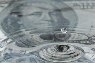liquid dollar