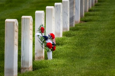 flowers in a military graveyard