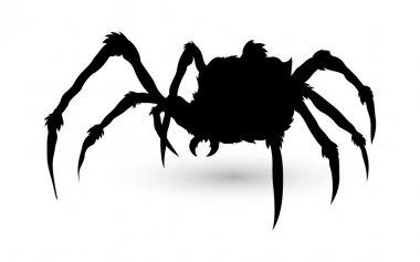 Spider Silhouette