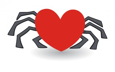Heart shaped spider - love cheat concept
