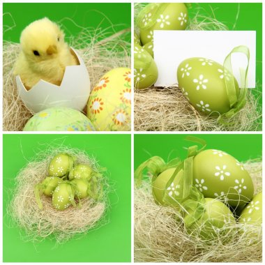 Set of photos of Easter eggs on green background on Holiday theme Set of photos on Easter theme