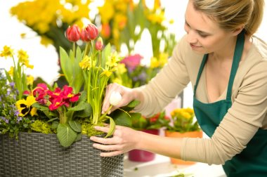 Florist arrange spring flowers colorful